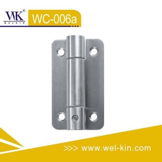 Stainless Steel 304 and 316 Spring Hinge